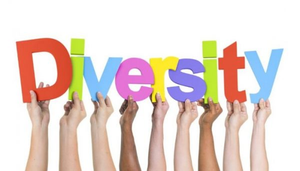 """Training course -""""Embracing Diversity""""- Training course on diversity management - Germany - abroadship.org"""