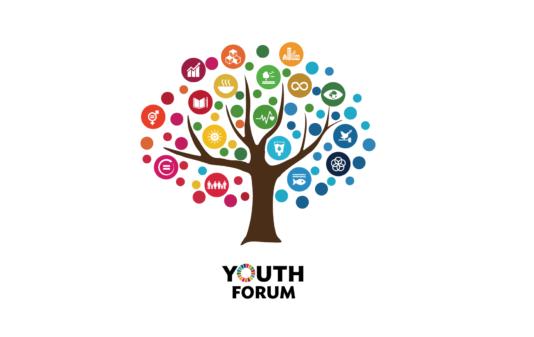 Training course - Non-formal youth work and formal youth studies - Armenia - abroadship.org