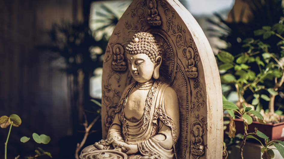 Online course- Buddhism and Modern Psychology - abroadship.org