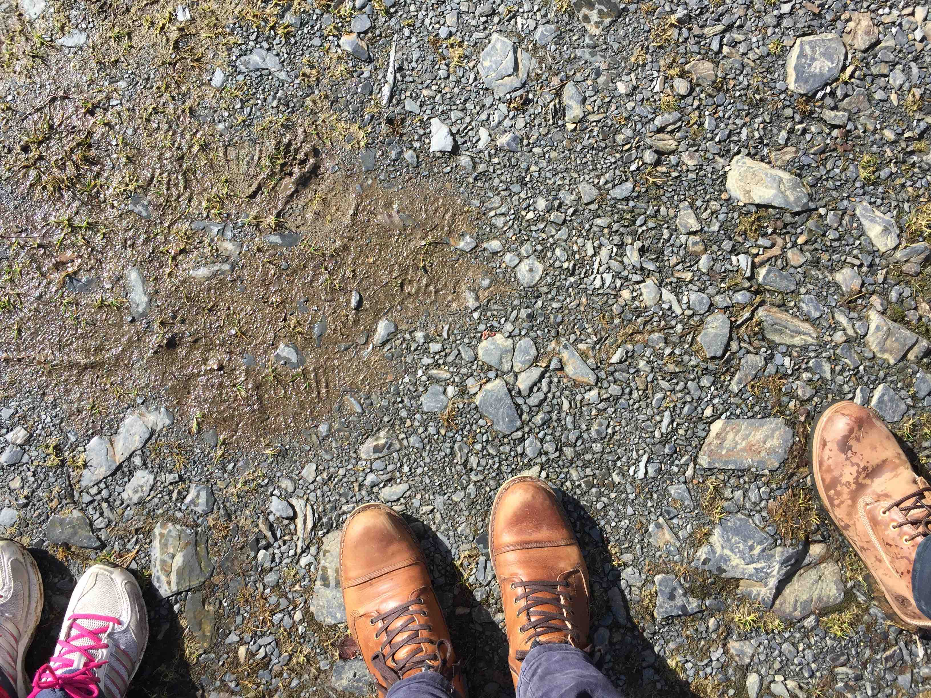 Step In Their Shoes - Youth Exchange - Hiking in Wales - United Kingdom - Abroadship.org